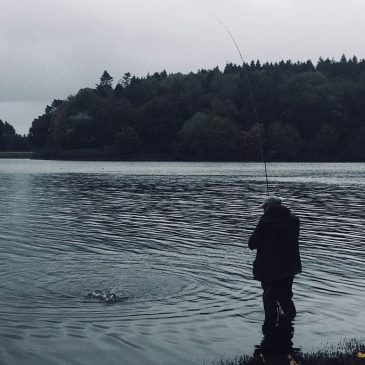 South West Lakes Trout Fisheries Report (October 2017)